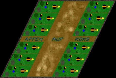 Siedler 3 Map: 12er_Affen_auf_Koks_West_vs_East von mad